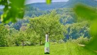Birnenschaumwein - CBB trocken Piccolo 0,2 l